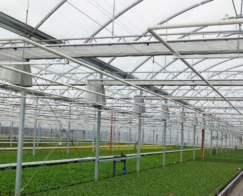 Ruba Baers potplanten met scherminstallatie