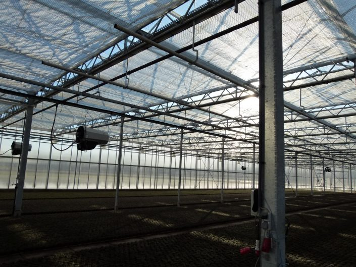 Holland Scherming project Manten, Geldern, Netherlands